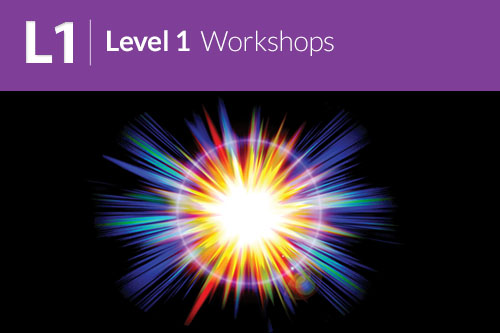 Level 1 Workshop