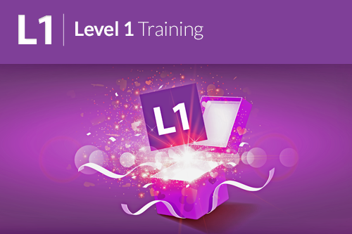 Quantum-Touch Level 1 Instructor Training